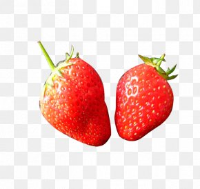 Strawberry - Strawberry Frutti Di Bosco Fruit Layers PNG