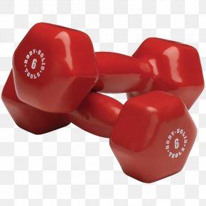 Dumbbells - Dumbbell Physical Exercise Clip Art PNG