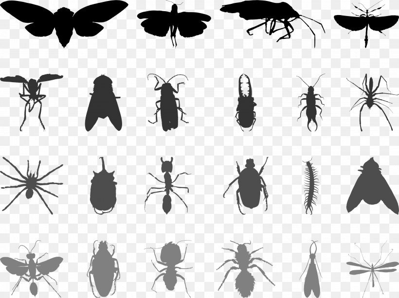 Mosquito Insect Butterfly Ant, PNG, 3039x2272px, Mosquito, Ant, Arthropod, Black And White, Butterfly Download Free