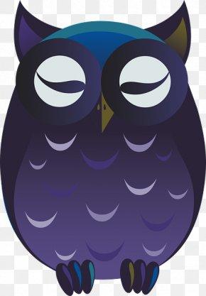 Owl - Owl Bird Clip Art Image Cartoon PNG