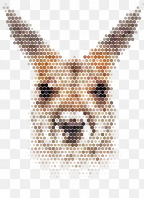 Vector Mosaic Kangaroo - Giant Panda Gray Wolf Lion Bear Illustration PNG
