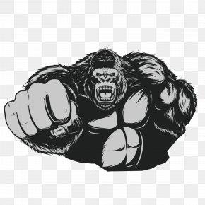 Muscle Gorilla - Western Gorilla Ape King Kong Chimpanzee PNG