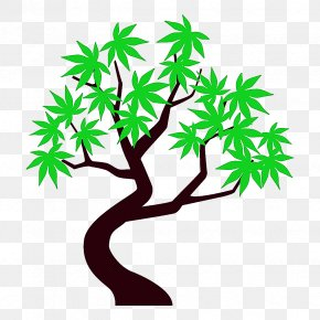 Woody Plant Plant Stem - Leaf Tree Green Branch Plant PNG