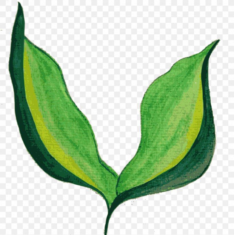 Leaf Watercolor Painting, PNG, 2396x2400px, Leaf, Art, Autumn Leaf Color, Color Chart, Fingerpaint Download Free