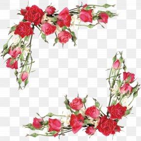 Rose - Rose Flower Bouquet Euclidean Vector PNG
