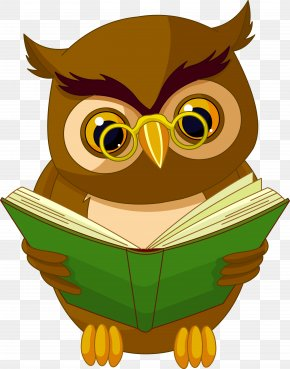 Transparent Owl With Book Clipart Picture - Owl Animated Cartoon Drawing Animation PNG