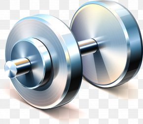 Dumbbell - Weight Training Olympic Weightlifting Dumbbell Physical Exercise PNG