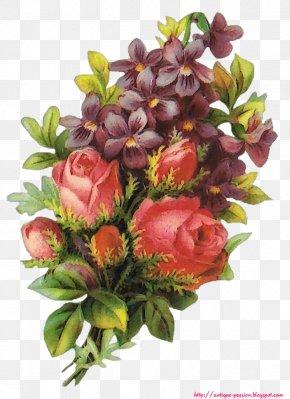Passion Flower - Image Hosting Service Emoticon Clip Art PNG
