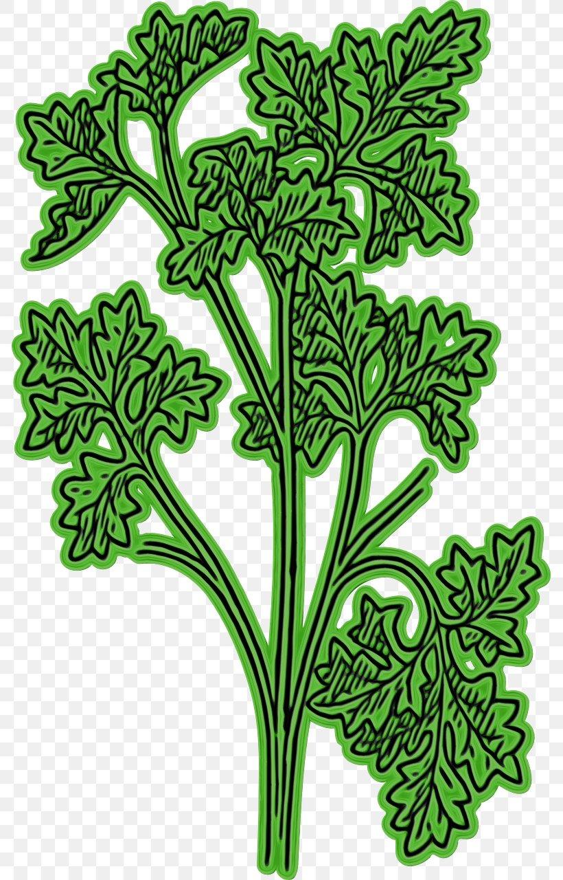 Leaf Green Plant Flower Plant Stem, PNG, 785x1280px, Watercolor, Flower, Green, Leaf, Paint Download Free