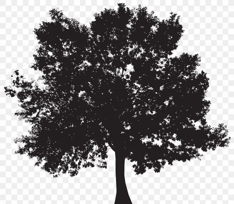 Silhouette Tree Clip Art, PNG, 8000x6965px, Tree, Black And White, Branch, Monochrome, Monochrome Photography Download Free
