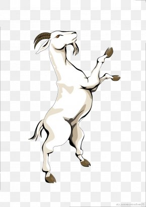 Goat Standing - Goat Cheese Horse Drawing PNG