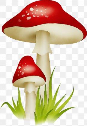 Agaricus Edible Mushroom - Mushroom Clip Art Agaric Agaricomycetes Agaricaceae PNG