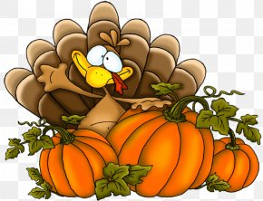 Thanksgiving Turkey Clipart PNG