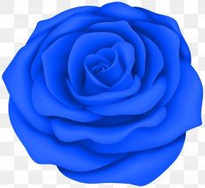 Rose - Clip Art Rose Desktop Wallpaper Image Drawing PNG