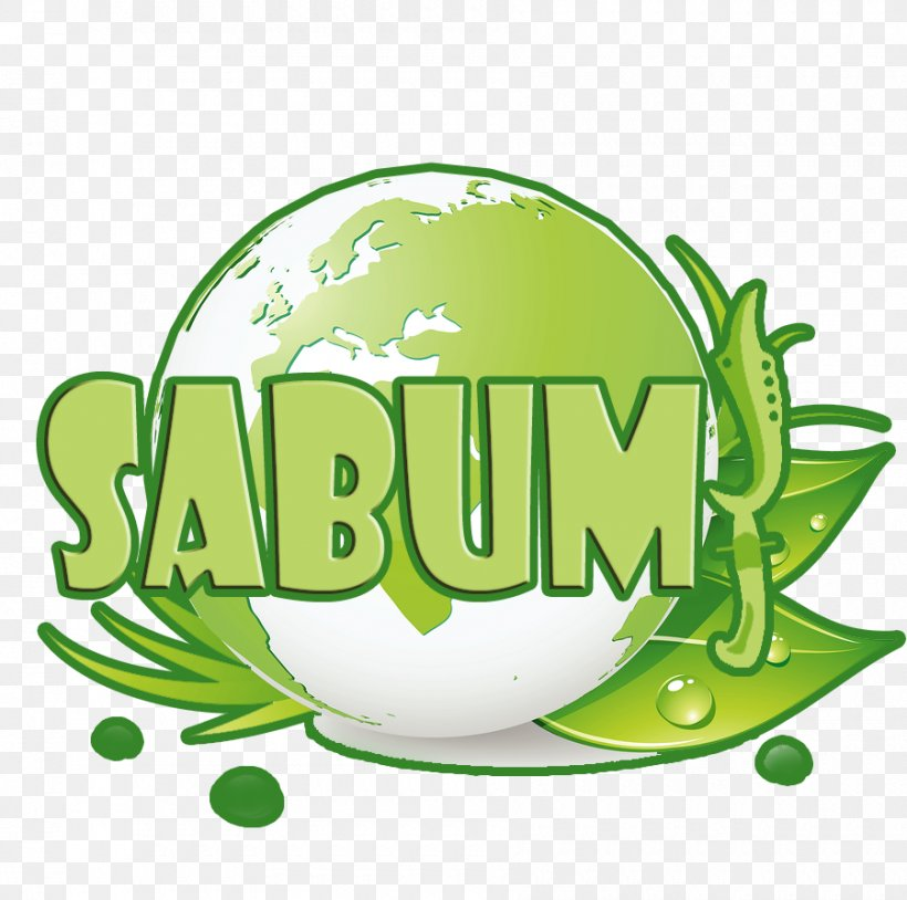 Logo Brand Font, PNG, 900x894px, Logo, Brand, Food, Fruit, Grass Download Free