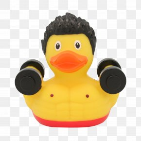 Rubber Duck - Rubber Duck Weight Training Bodybuilding Toy PNG