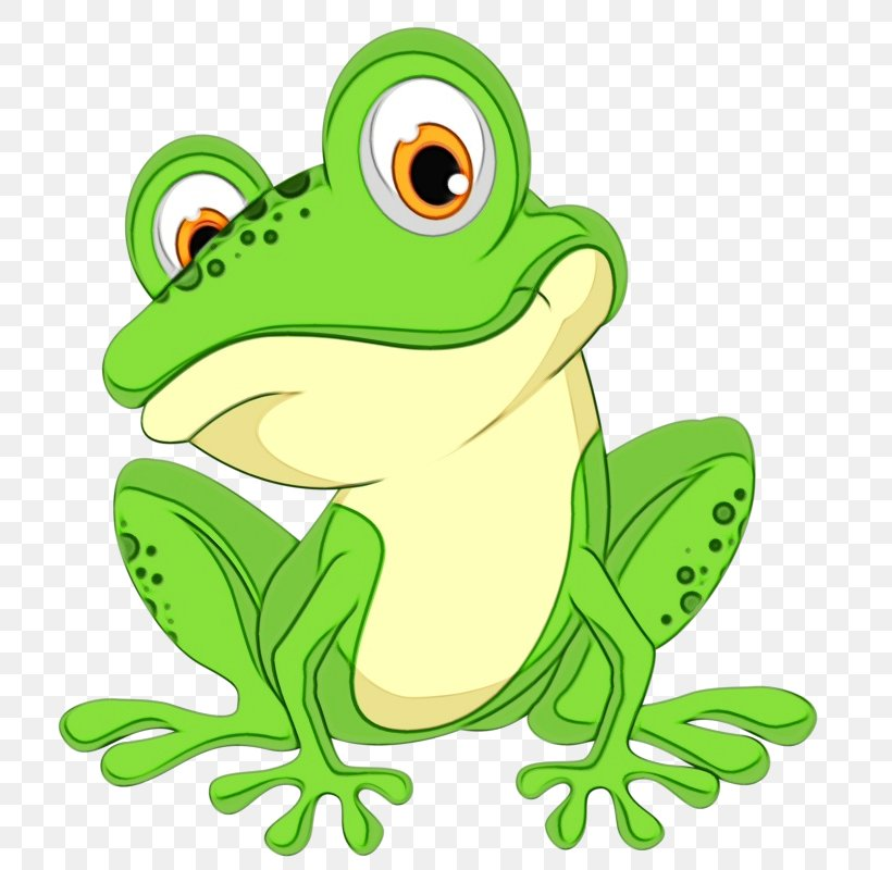 True Frog Green Frog Cartoon Tree Frog Png 735x800px Watercolor Cartoon Frog Green Hyla Download Free Green tree frog cartoon is a free transparent png image carefully selected by pngkey.com. true frog green frog cartoon tree frog