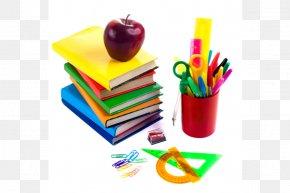 School Kids - National Primary School School Supplies Student Middle School PNG