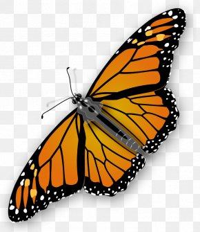 Monarch Butterfly Clipart - Monarch Butterfly Clip Art PNG