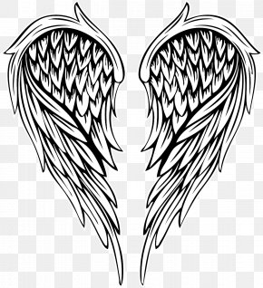 Vector Painted Feather Angel Wings - Drawing Illustration PNG