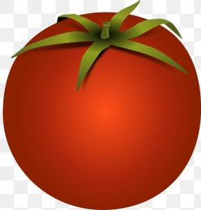 Vector Tomato - Hamburger Cherry Tomato Lasagne Bolognese Sauce Clip Art PNG