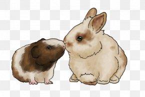 Lionhead Rabbit - Domestic Rabbit Guinea Pig Lionhead Rabbit Hare PNG