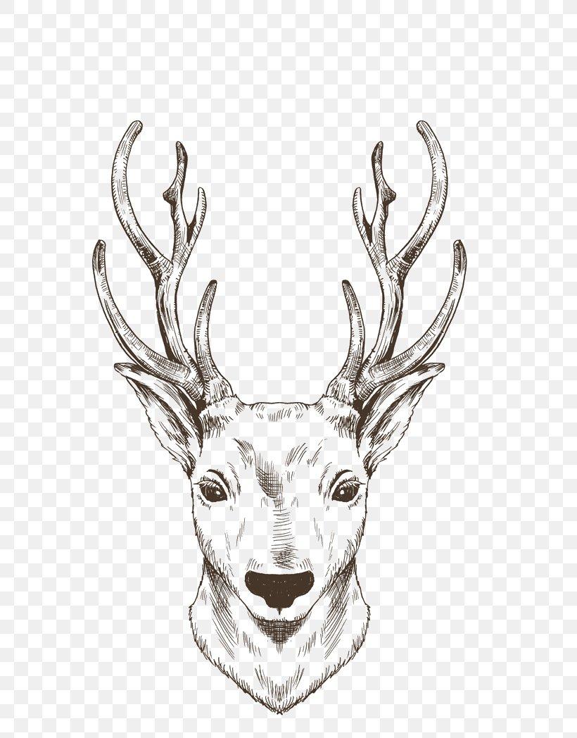 Christmas Reindeer Png.Reindeer Elk Moose Drawing Png 800x1048px Reindeer