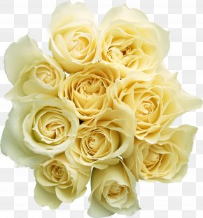 White Rose Image, Flower White Rose Picture - Rose Flower Bouquet PNG