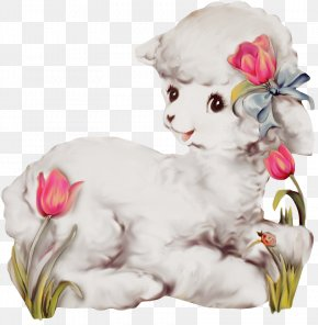 Lamb - Sheep–goat Hybrid Sheep–goat Hybrid Clip Art PNG