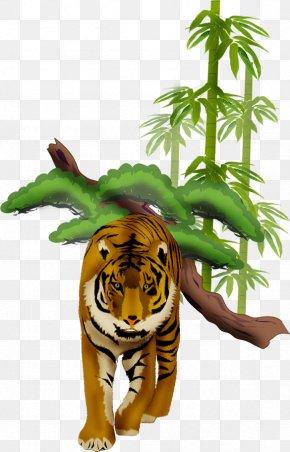 Tiger - Tiger Wildlife Animal PNG