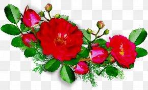 Garden Roses Birthday Flower Bouquet Wish Wedding Anniversary PNG