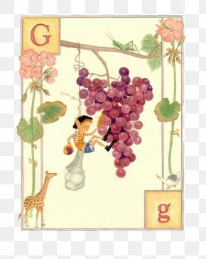 English Cartoon Cards G - Elfabet: An ABC Of Elves Book Illustration Alphabet Letter Illustration PNG