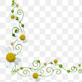 Chrysanthemum Vines - Flower Euclidean Vector Clip Art PNG