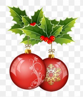 Christmas - Christmas Ornament Common Holly SO2 Distribuzione Vini Naturali Christmas Carol PNG