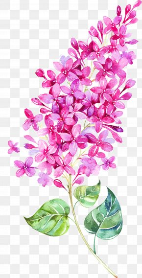 Floating Flower - Watercolor Painting Flower Clip Art PNG