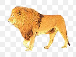 Lion Terrestrial Animal Maasai People Action & Toy Figures PNG