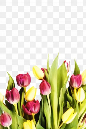 Flower Arranging Lily Family - Floral Spring Flowers PNG