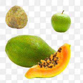Papaya Physical Map - Skin Care Papaya Food Exfoliation PNG
