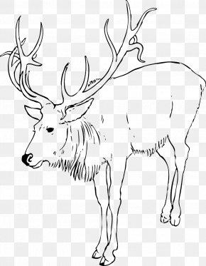 Reindeer - Reindeer Rudolph Clip Art PNG