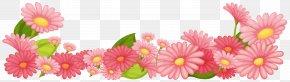 Flower - Flower Garden Stock Photography Clip Art PNG