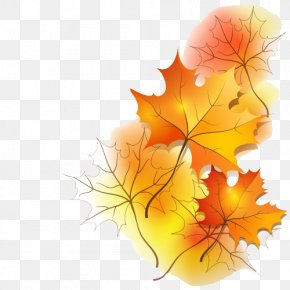 Maple Leaf - Ramadan Prayer Blessing Dua Jumuah PNG