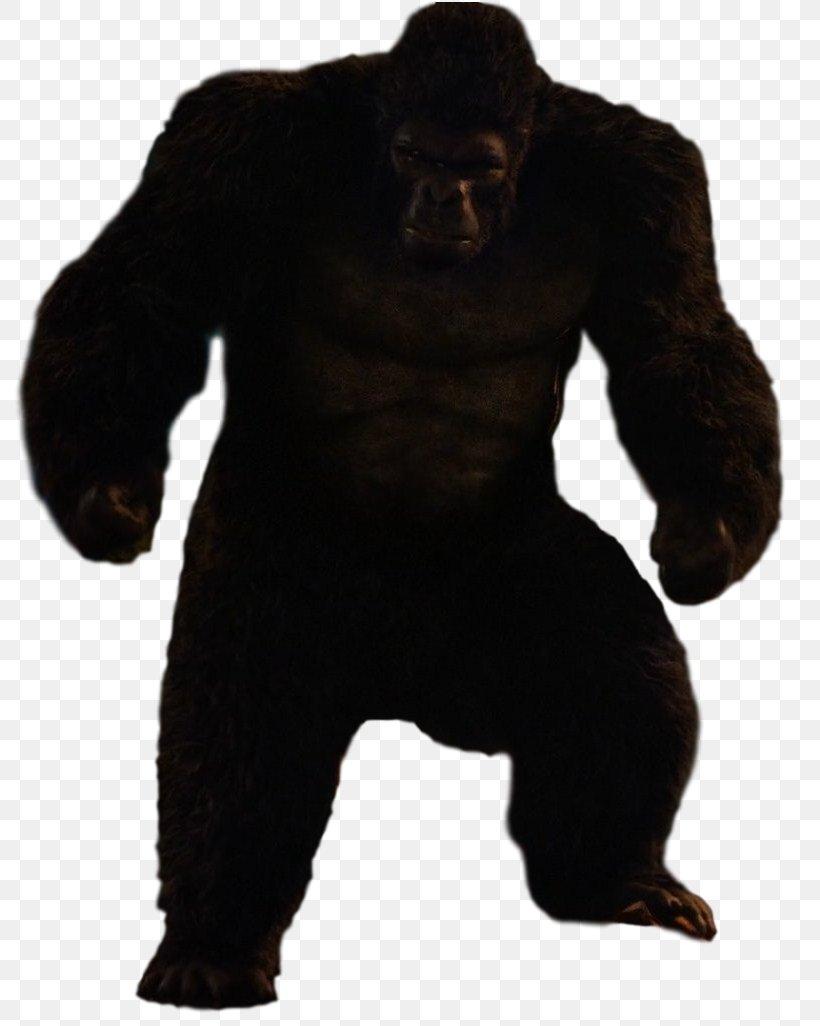 Gorilla Grodd Trickster Ape King Kong, PNG, 803x1026px, Gorilla Grodd, Ape, Arrowverse, Art, Bear Download Free