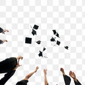 Toss Graduation Cap - Graduation Ceremony Square Academic Cap Tassel Hat PNG