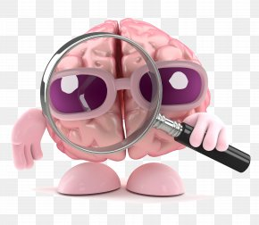 Brain Cartoon Brain Design Picture - Brain Magnifying Glass Stock Photography PNG