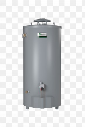 Hot Water - Tankless Water Heating Natural Gas A. O. Smith Water Products Company PNG