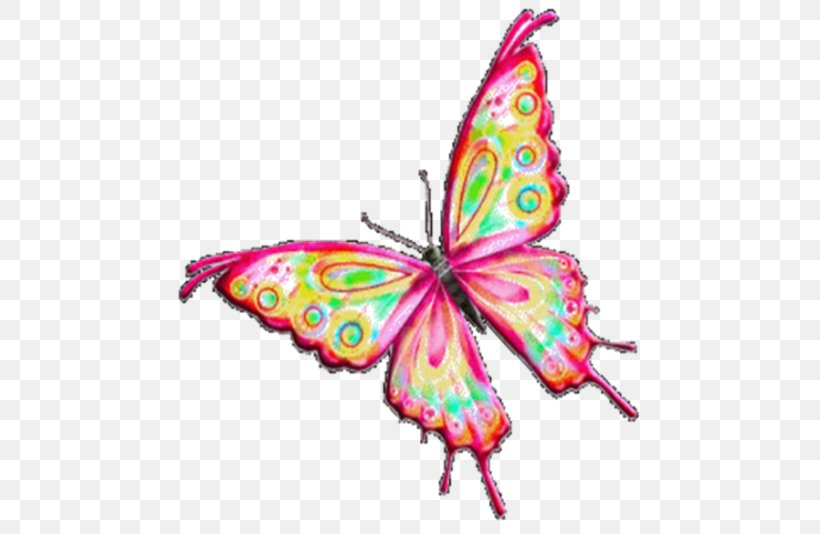 Powerpoint Animation Clip Art Png 505x534px Animation Brush Footed Butterfly Butterfly Computer Animation Computer Graphics Download