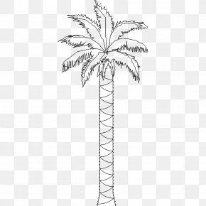 Date Palm - Twig Arecaceae Date Palm Plant Stem Leaf PNG