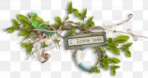 I Love The Sea Leaves - Designer Sea Clip Art PNG