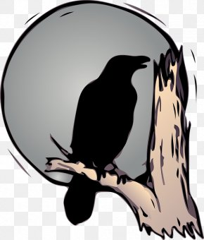 Raven - Bird Common Raven American Crow Drawing PNG