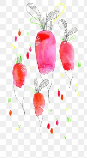 Drawing Carrot - Watercolor Painting Drawing Vegetable Illustration PNG